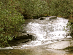 trout stream waterfall