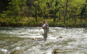 trout fishing river