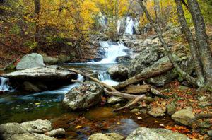 mountain trout stream