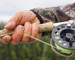 fly fishing rod reel