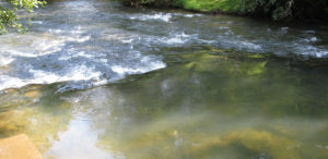 fly fishing fightingtown creek
