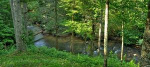 fly fishing hemptown creek