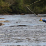 fly fishing nantahala river