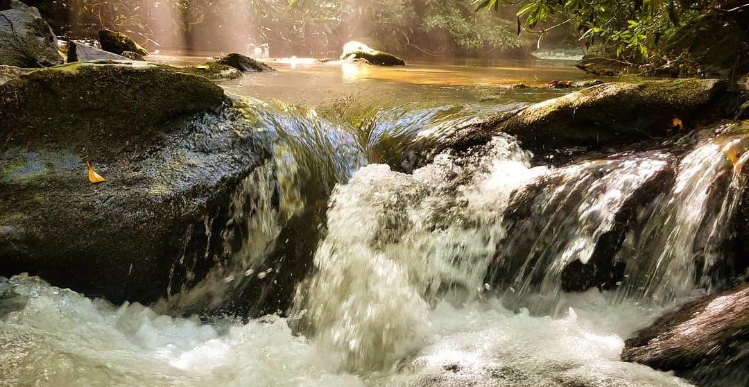 trout fishing noontootla creek