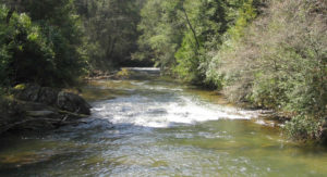 fly fishing soque river